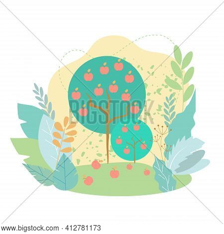 An Apple Tree With Apples On Its Branches And Fallen Ones. Harvesting, Apple Orchard. Vector Flat Il