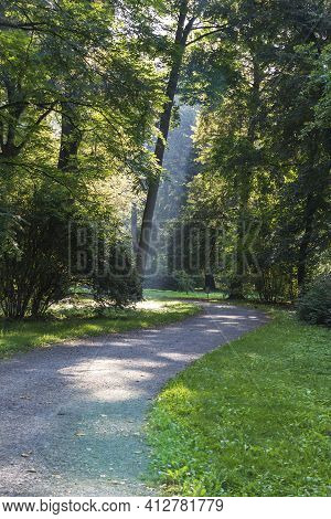 A Path In A Park Where Trees And Sun Rays Shine Through The Trees.