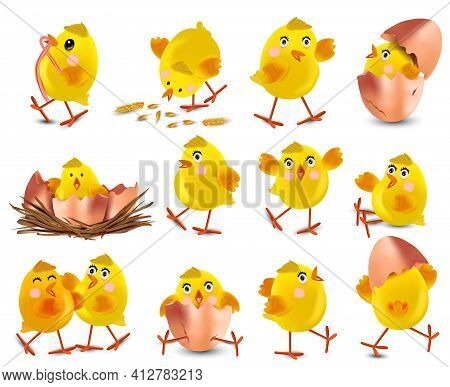 Collection Of Cute Yellow Chickens. Funny Cartoon Chickens For Your Design. Easter Chicks On White B