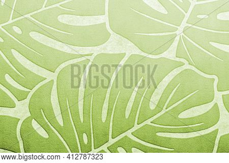 Pattern With Monstera Palm Branches, Green Tropical Tree Leaves On White Background