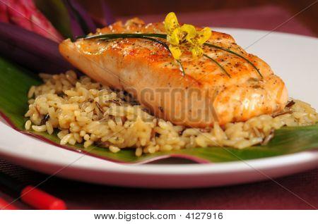 Salmon On Rice