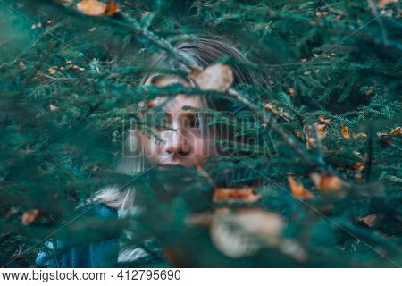 A Girl Wanders Through The Woods, Peeps Out From Under The Christmas Tree, In Search Of A Way. The G