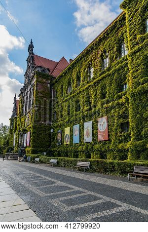 Wroclaw, Poland - May 26 2020: Facade Of National Museum Building In Wroclaw Full Of Green Ivy On Wa