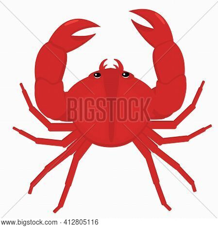 Illustration Of A Crab On A White Background
