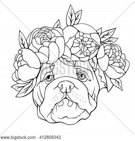 Bulldog With Flowers On His Head Coloring Book. Vector Hand Illustration.