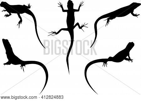 Set Of Lizards Black Silhouette Vector Illustration Isolated