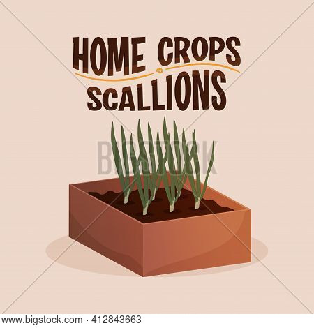 Home Crop Scallions In Wood Food Health Icon- Vector