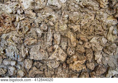 Tuff Stone As Texture And Background. High Quality Photo