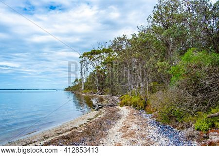 Raymond Island Coastal Vegetation In Victoria, Australia