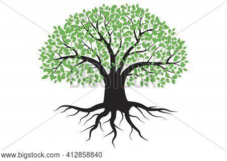 Lush Green Tree. Vector Art Illustration. Stock Image. Eps 10.