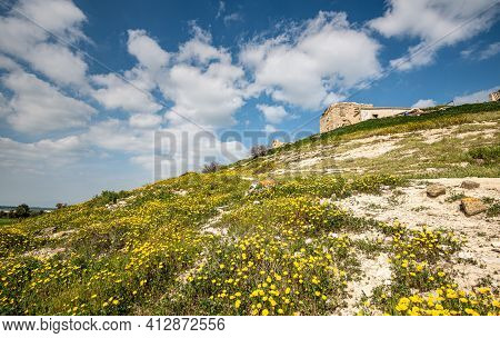 Hill With Field Of Yellow Marguerite Daisy Blooming Flowers Against Blue Cloudy Sky. Abandoned Build