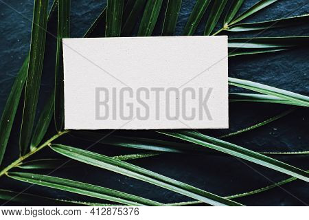 White Business Card Flatlay On Dark Stone Background And Green Exotic Leaf, Luxury Branding Flat Lay