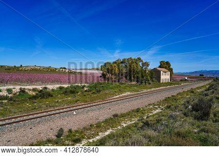Old Railway Station La Macetua In Cieza At Flowering Time, Murcia Region In Spain