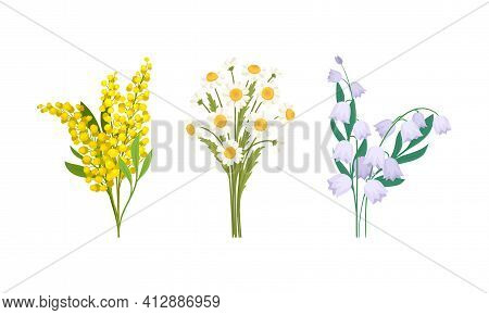 Bunch Of Spring Flowers With Fragrant Blossom On Green Stem Vector Set