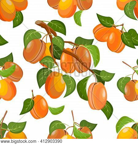 Vector Pattern Of Branches With Apricots.branches With Bright Ripe Apricots On A White Background In
