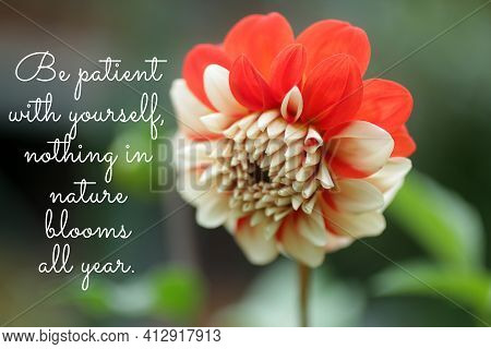 Inspirational Motivational Quote - Be Patient With Yourself, Nothing In Nature Blooms All Year. Word