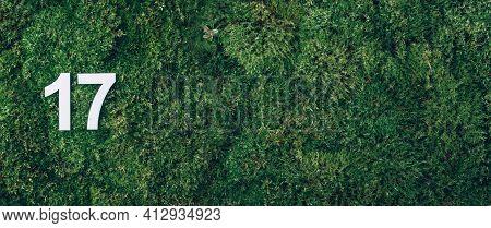 Ecology, Zero Waste. Green Grass, Digit Seventeen. Birthday Greeting Card With Inscription 17. Anniv