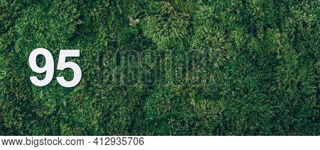 Green Grass, Digit Ninety-five. Birthday Greeting Card With Inscription 95. Anniversary Concept. Ban