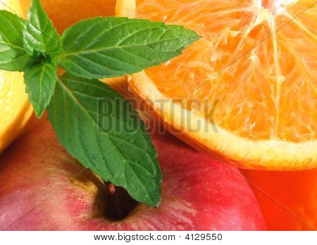 Fruit And Leaves Of Mint.