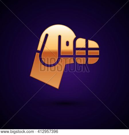 Gold Dog In Muzzle Icon Isolated On Black Background. Accessory For Dog. Vector