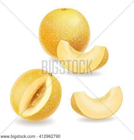 Melon, Realistic Yellow Ripe Melon Slices Set. Vector Icon