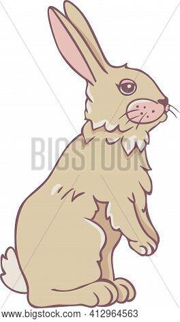 Vector Illustration Of Charming Rabbit. Standing Hare.