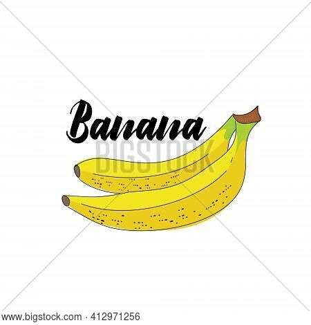 Vector Simple Isolated Image Of A Banana Fruit. Illustration Of A Banana In Stroke Sketch With The H