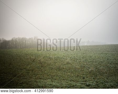 Amazing Foggy Field Like From The Other World. Mystic And Deep Foggy Mood.