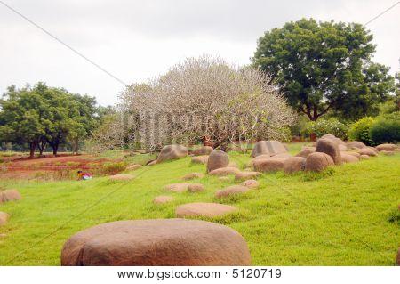ruhigen Garten