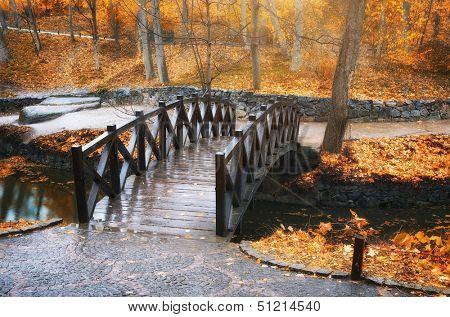 Autumn landscape. Bridge in park. Composition of nature.