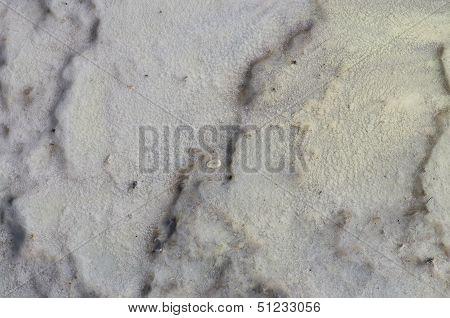 Geological Organic Texture