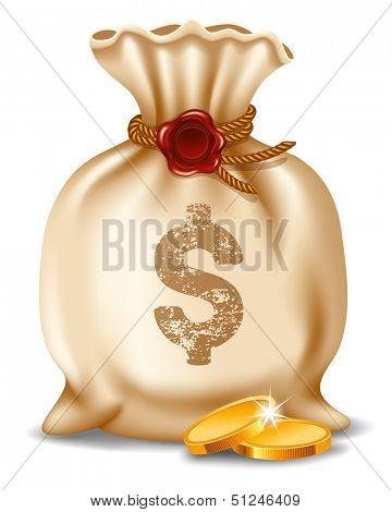 Money bag isolated on white background. Vector illustration.