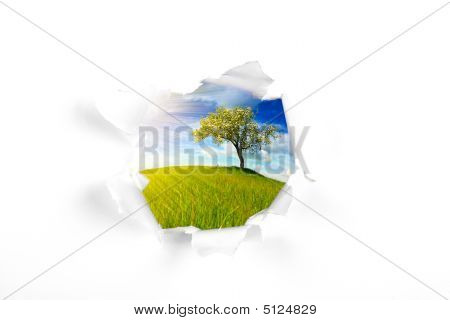 Summer Landscape Behind Wall Hole