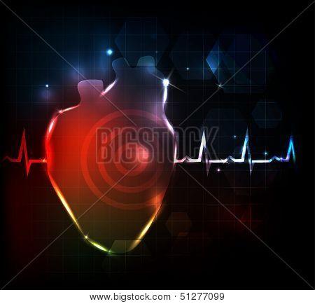 Heart anatomy And Cardiogram