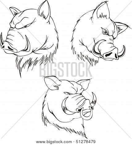 Aggressive boar heads. Set of black and white vector tattoo designs. poster