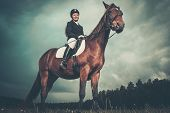Beautiful girl sitting on a horse outdoors against moody sky poster
