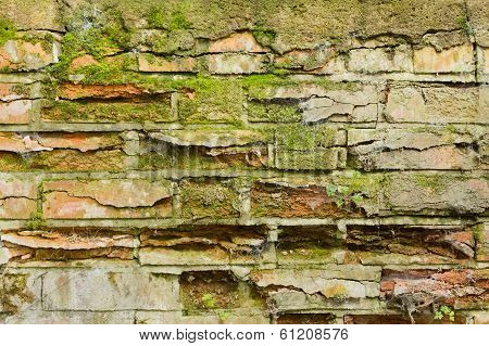 Moss Covered Crumbling Wall Background