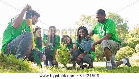 Group of environmentalists planting together in park
