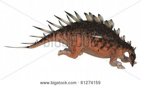 Dinosaur Kentrosaurus