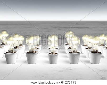 Rows Of Light Bulbs With Cold Light