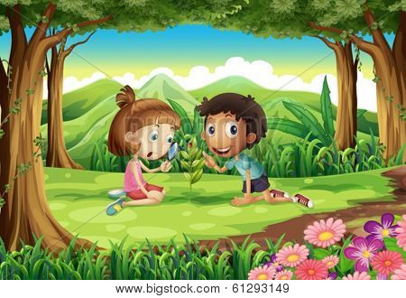 Illustration of a forest with two kids studying the growing plant with a bug