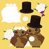 nice owls bridegroom and bride vector illustration poster