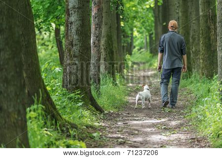 man and dog walking on park