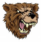 An illustration of a fierce bear animal character or sports mascot poster
