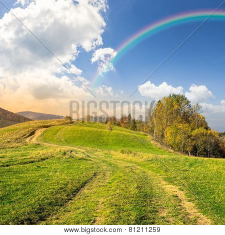 Path On Hillside Meadow In Mountain with Rainbow