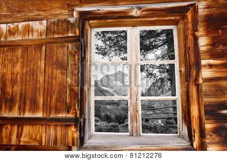 Looking through the wooden windows