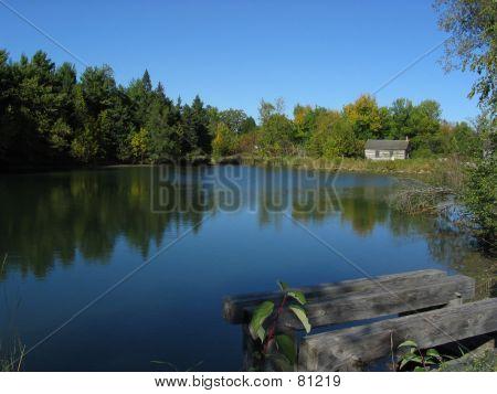 Childhood Pond