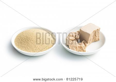 fresh and dry yeast in bowl  on white background