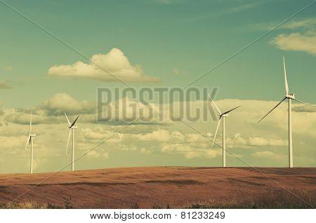 Wind Turbines In The Grain Fields
