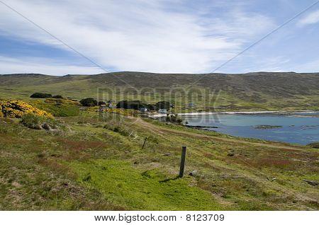 Landwirtschaft auf den Falklandinseln